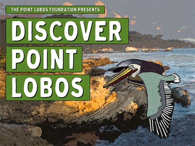 Discover Point Lobos App